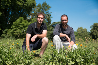autour des plantes boutique en ligne vente tisanes aromates bio
